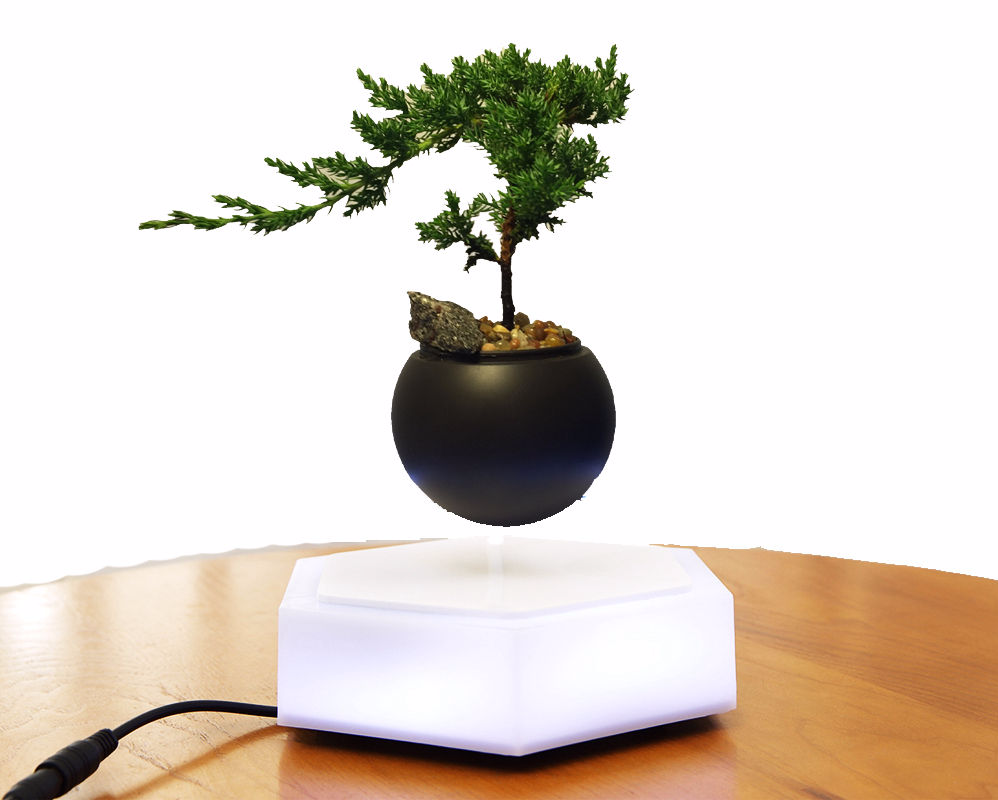 Bonsai Levitation