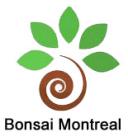 Magasin Bonsai Montreal